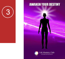 lmc awaken your destiny