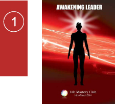 lmc awakening leader